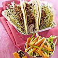 Tacos de boeuf epice et salade de papaye .