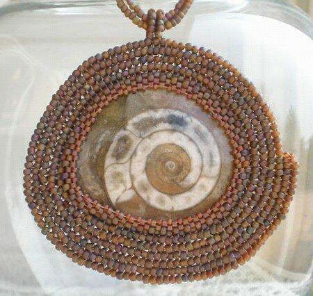 Ammonite_sertie