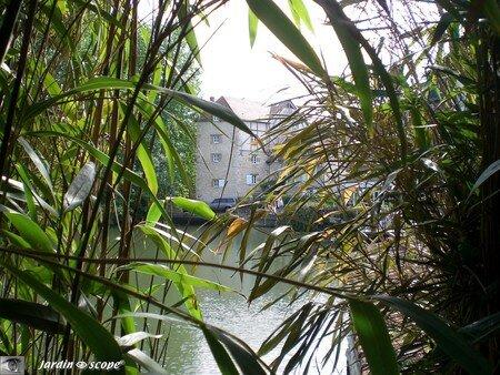 Le Moulin des Tacreniers