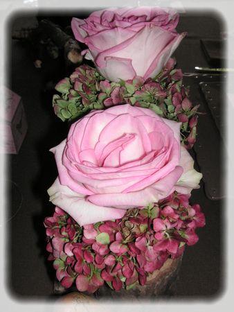 rose_des_bois_005_modifi__1