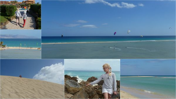 montage canaries