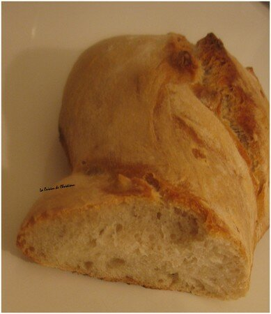 Pain_au_levain_coupe_0208