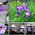 violet montage