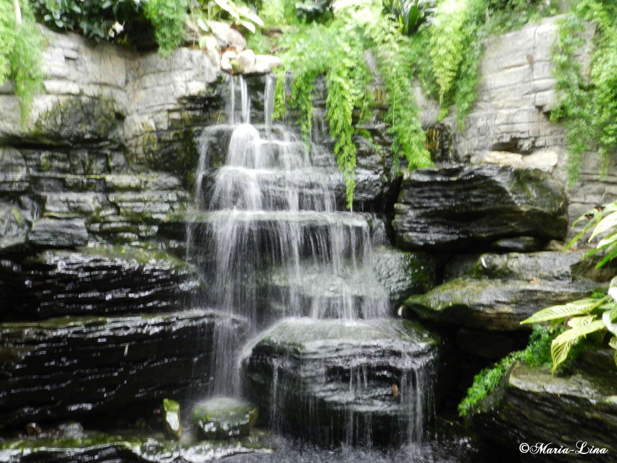 Chute d 39 eau les douceurs de maria lina for Cascade d eau jardin