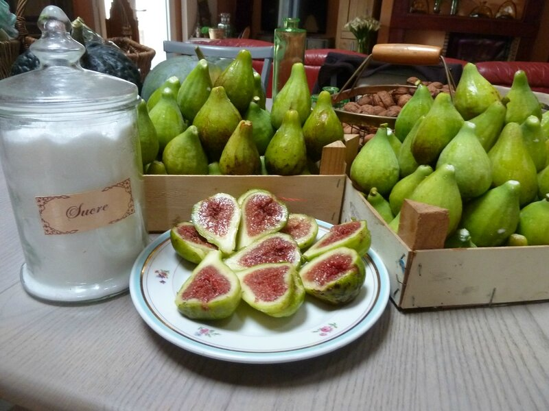 10-figues (4)