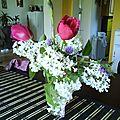 lilas, tulipe