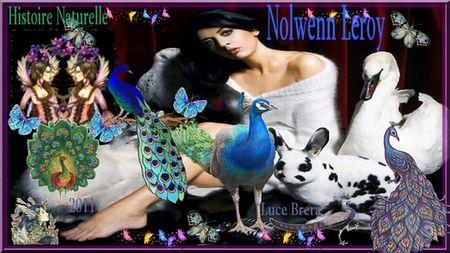 NolwennTOur
