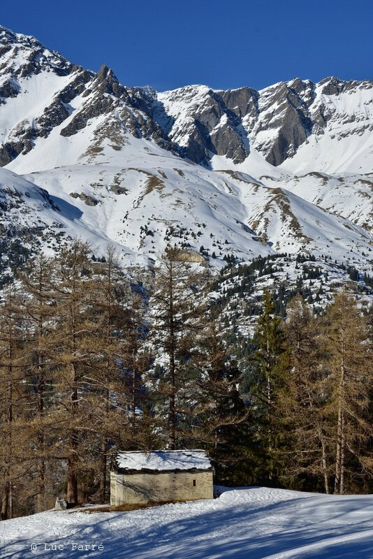 val cenis_00037 a