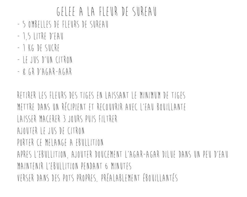 Recette-Gelée-Sureau