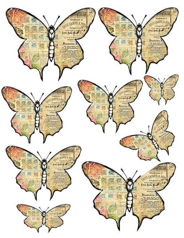 1346197129_55_FT838_sd_prima_romance_butterflies3_