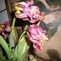 J'espère que je n'achèterai plus de bouquets