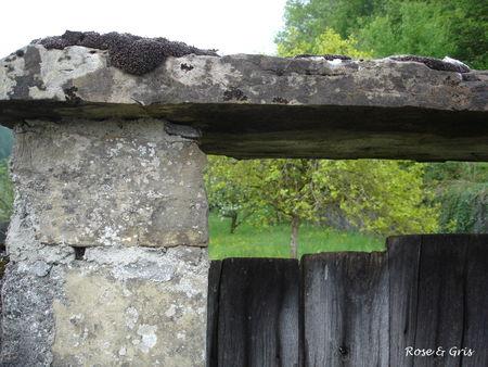 pierre_et_bois