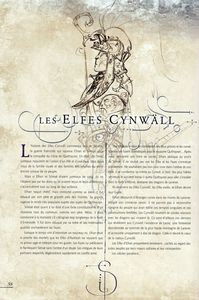 Livre univers Elfes cynwalls 1