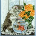 chat et poisson