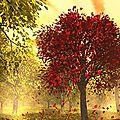 Fête de mabon - 21 ou 22 septembre - équinoxe - le rituel