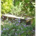 Un petit tour dans le jardin