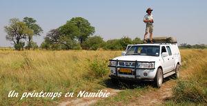 Un_printemps_en_Namibie