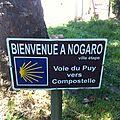 Nogaro1