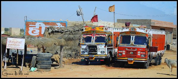 Camions indiens Tata