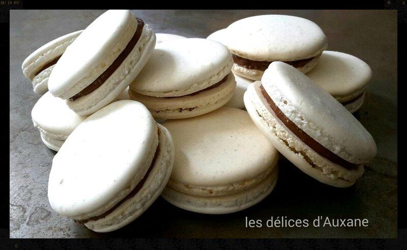 macarons choco coco