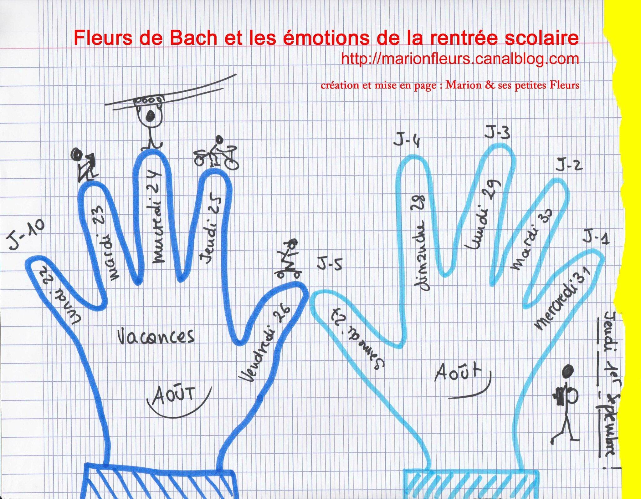 A quelques jours de la rentrée scolaire de septembre (1/2) / émotions ? / Fleur de Bach : MIMULUS