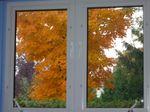 automne_089