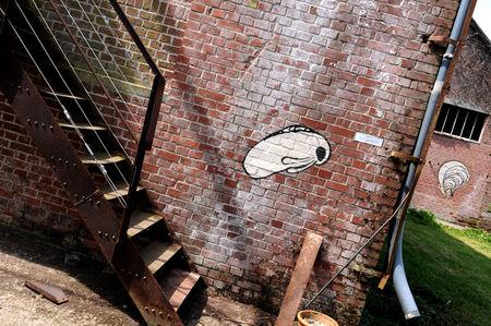 RabbitOyster_escalier