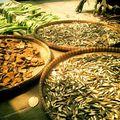 Wat Cheddi Hoi - Bouts de bois en train de sécher