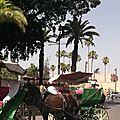 Gourmande à marrakech