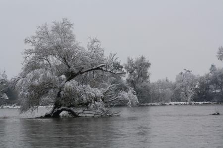29112010_neige_bords_loire_9