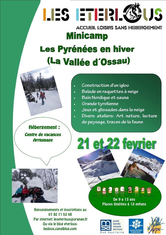 CARTELminicamp osseau