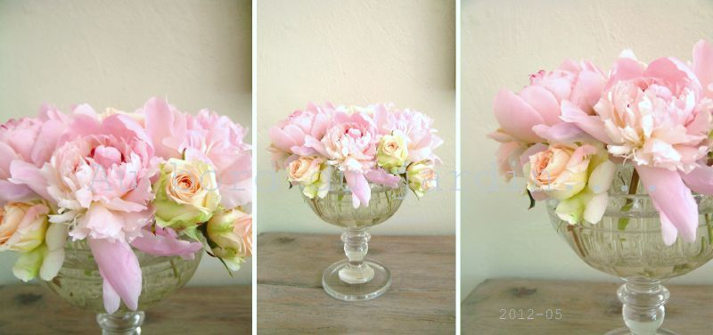 Roses et pivoines 2