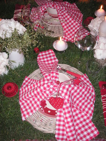 table_picnic_033