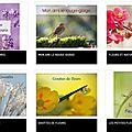 Je vous présente mes calendriers photos ...