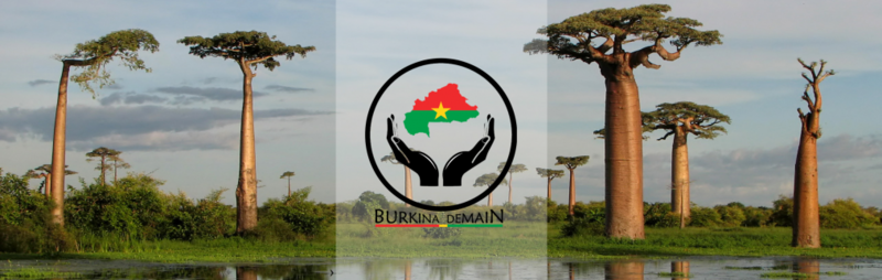 cropped-header-site-bukrina-demain1