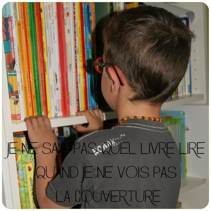 faciliter son quotidien ranger les livres pour enfants ensemble naturellement. Black Bedroom Furniture Sets. Home Design Ideas