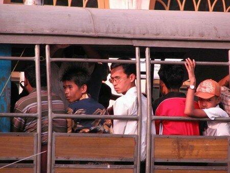 Birman_100___12_