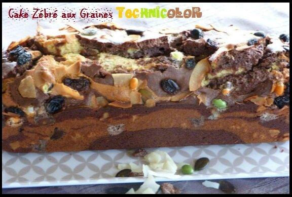 """ღ """" Miam """" Cake Zébré aux Graines Technicolor"""