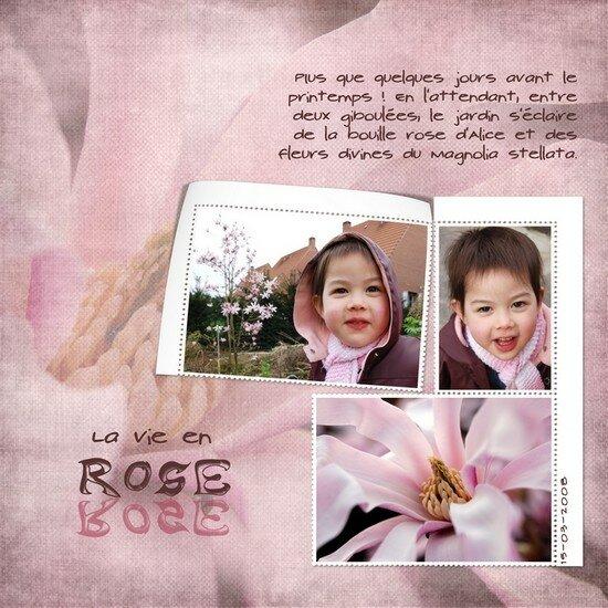 Alice___le_magnolia_stellata_550_