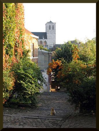 rue_des_remparts