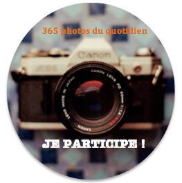 Je participe : 365 photos du quotidien avec Virginie B
