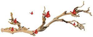 branche a papillon