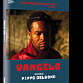Concours vangelo : 3 dvd à gagner