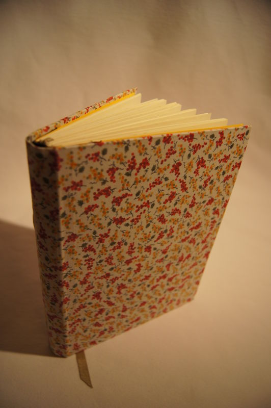 Livre-couvrure tissu