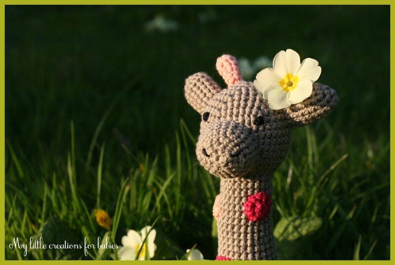girafe02