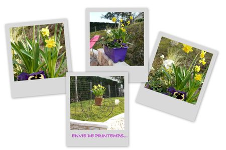 printemps20111