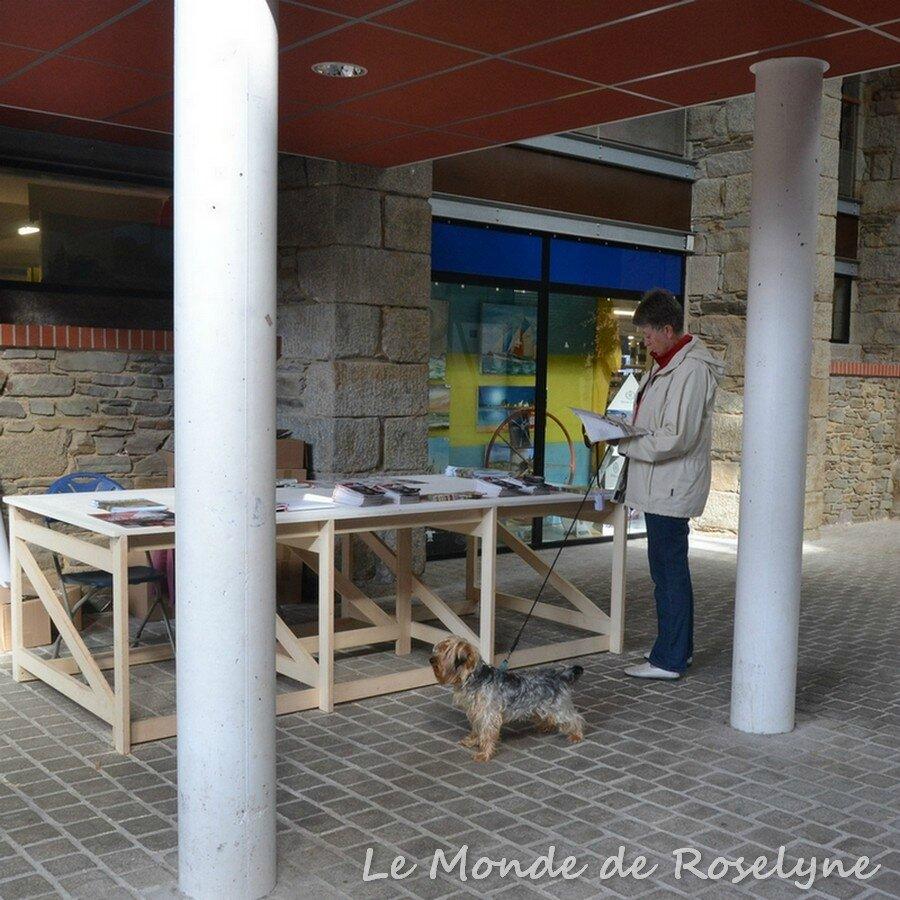 Festival Photoreporter en Baie de Saint-Brieuc aujourd'hui à Rosengard
