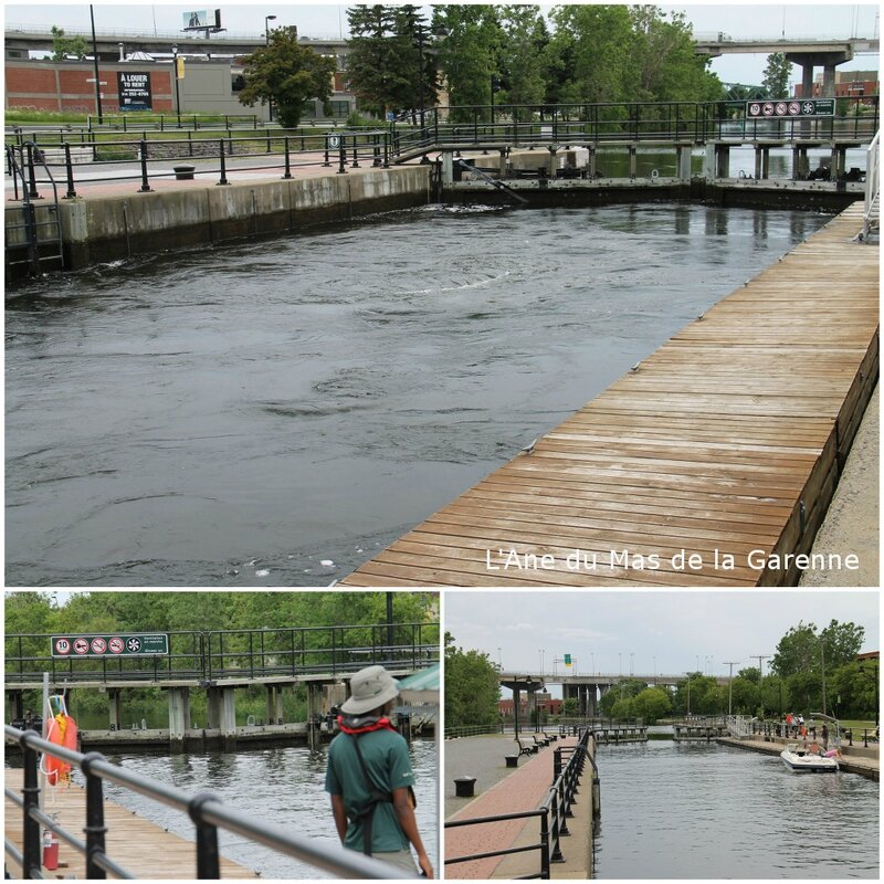 canal_lachine_2015_06_272