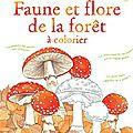 Usborne - faune et flore de la forêt à colorier