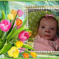 pixiz_515054868b645
